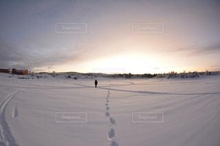 雪の中の足跡の写真・画像素材[2121416]