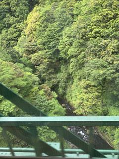 箱根の写真・画像素材[2248880]