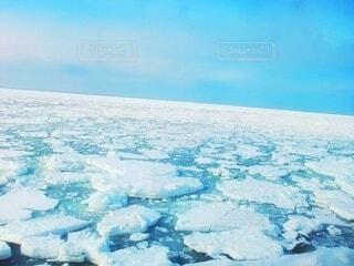 流氷が浮かぶ広い海の光景の写真・画像素材[4772321]
