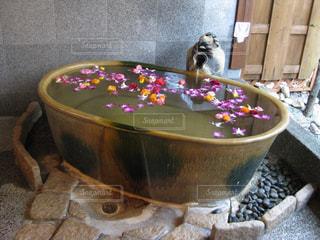 城崎で貸切露天風呂に入るの写真・画像素材[2612988]