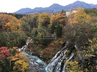白髭の滝と紅葉の写真・画像素材[2438249]