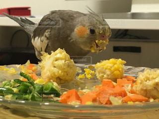 食べ物の写真・画像素材[2254696]