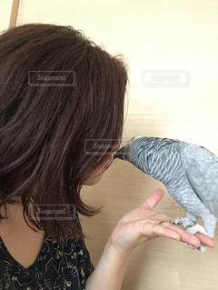 愛鳥と❤️の写真・画像素材[2923276]