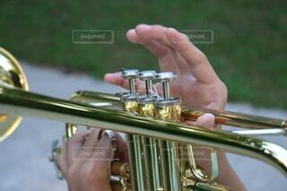 トランペット練習中の手の写真・画像素材[3901139]