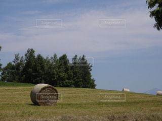 牧草ロールの写真・画像素材[2265846]