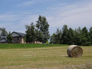 牧草ロールの写真・画像素材[2265849]