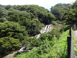 男女滝の写真・画像素材[2435508]