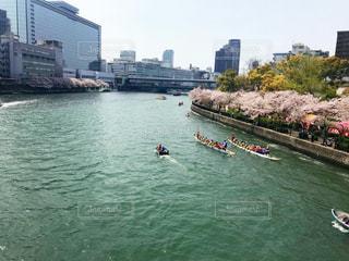 春の川の写真・画像素材[2269786]