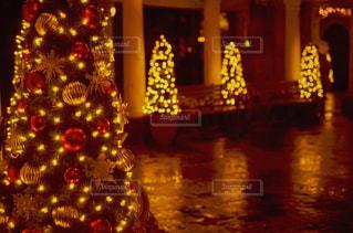 クリスマスツリーの写真・画像素材[2263295]