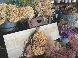紫陽花のドライフラワーたちの写真・画像素材[2265679]