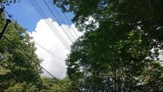 アイスクリームのような雲の写真・画像素材[3679454]