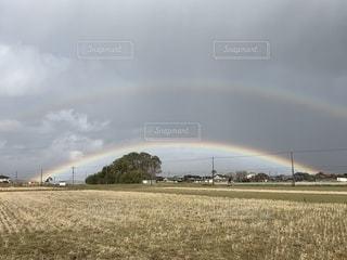 野原の虹の写真・画像素材[2264731]