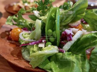 グリーンサラダのクローズアップの写真・画像素材[2267565]