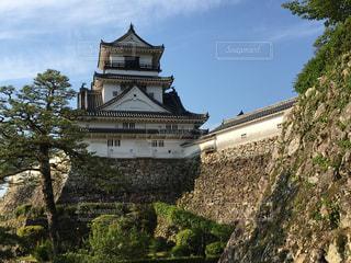 早朝の高知城の写真・画像素材[2269915]