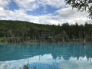 木々に囲まれた大きな水域の写真・画像素材[2322446]