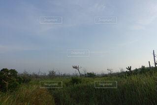 丘の向こうは海岸の写真・画像素材[2285766]