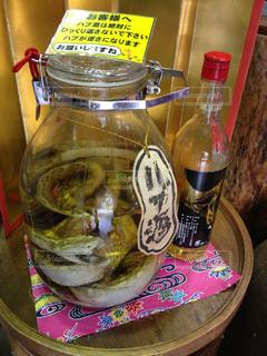 沖縄のハブ酒の写真・画像素材[2274976]