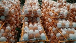 紅白卵の写真・画像素材[2885677]
