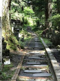 山寺へのさんどの写真・画像素材[2274381]