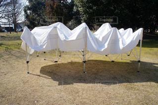 野原のテントの写真・画像素材[2279848]