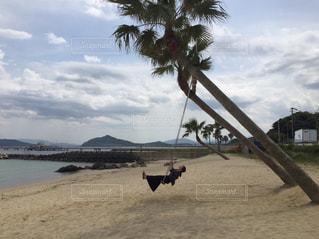 糸島のブランコの写真・画像素材[2279201]
