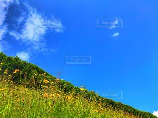 とある田舎の風景の写真・画像素材[2283352]