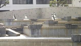 石造りの建物のクローズアップの写真・画像素材[2279650]