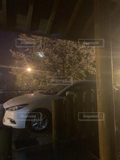 夜桜と車の写真・画像素材[2281847]