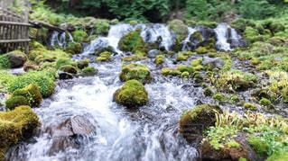 川の流れの写真・画像素材[2282410]