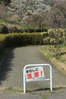 道路の側の標識の写真・画像素材[3042331]