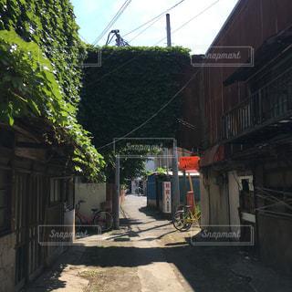 廃墟の並ぶ路地の写真・画像素材[2756714]