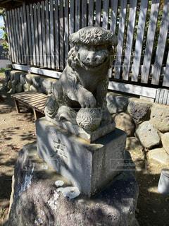 狛犬の写真・画像素材[3122184]