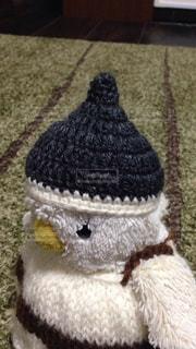 我が家のペンギンの写真・画像素材[2288060]