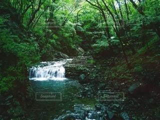 鬼怒川の龍王峡の写真・画像素材[2323198]