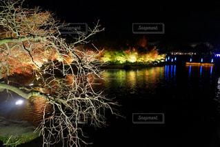 輝きの夜の写真・画像素材[2327453]