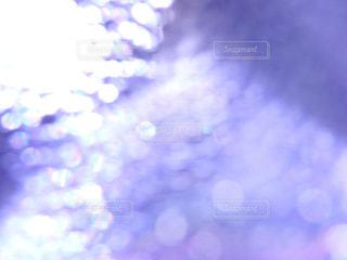 いつかの夢の中の写真・画像素材[2289919]