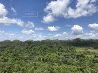 背景に木がある大きな緑の野原の写真・画像素材[2286873]