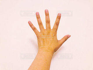 手を広げるの写真・画像素材[2329726]