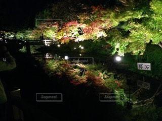 秋の写真・画像素材[94742]