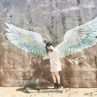 天使の写真・画像素材[2295633]