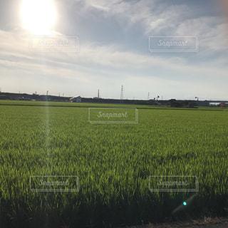夏の田舎の写真・画像素材[2298208]