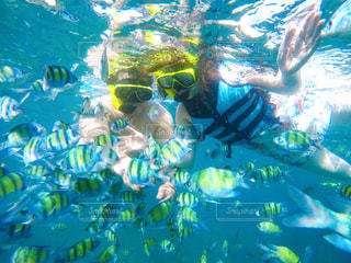 水の中を泳いでいる人の写真・画像素材[2300272]