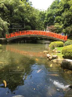 池に架かる橋の写真・画像素材[156486]