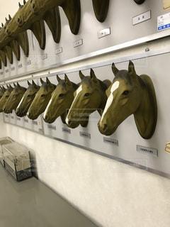 馬の写真・画像素材[1117945]