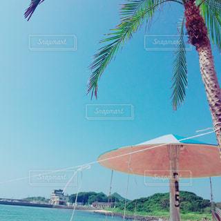 ビーチの写真・画像素材[2307505]