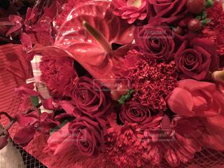 花のクローズアップの写真・画像素材[2299134]