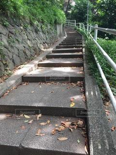 No.105964 風景