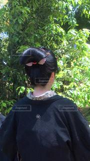 和服女子の後ろ姿の写真・画像素材[1832390]