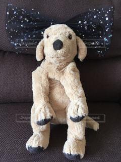 リボンを付けた犬のぬいぐるみの写真・画像素材[2452355]