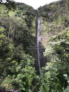 マウイ島の滝の写真・画像素材[2304396]